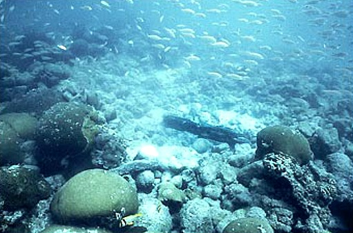 San Pedro Underwater Archaeological Preserve
