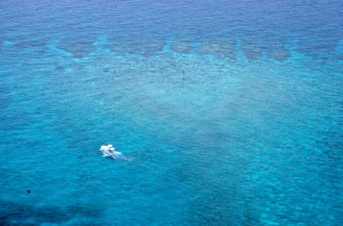 Dive Boat Over 9' Stake Reef