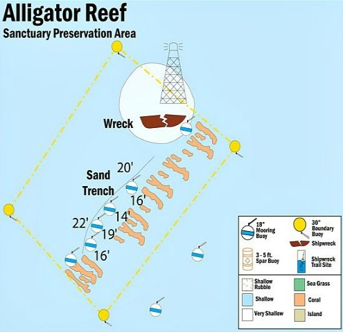 Alligator Reef One Of Key Largo S Best Diving Amp Snorkel Sites