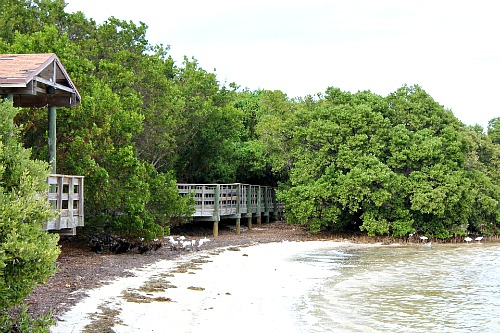 Boardwalk at Anne's Beach in Islamorada