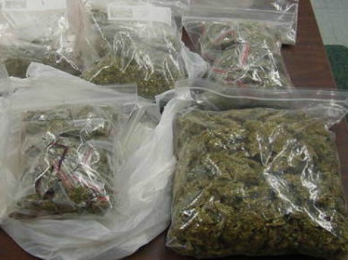 Bags Of Seized Marijuana For Sale