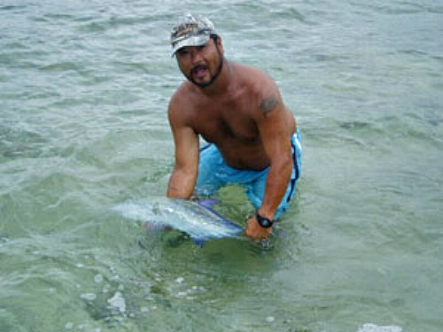 Florida Keys Bonefish in the Flats About to be released