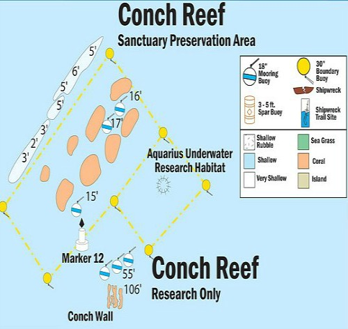 Conch Reef Map