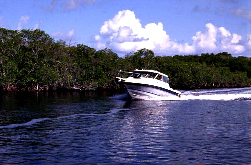 Boat Rentals Should Have The Extras You Need