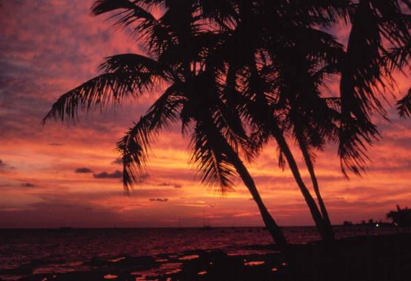 Florida Keys Vacation Rentals are Often Waterfront