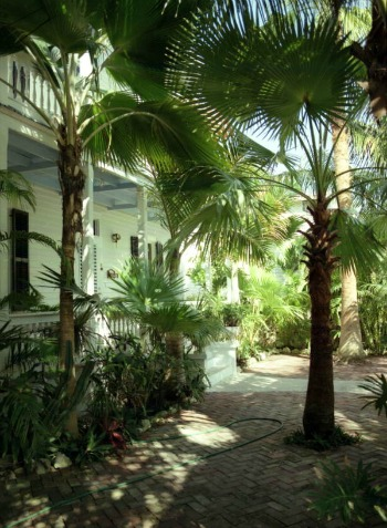 Florida Keys Vacation Rentals Have Lush Yards