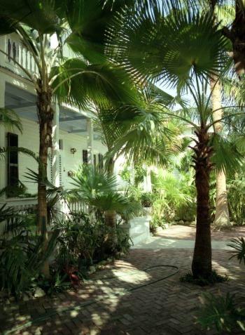 Florida Keys Vacation Rentals Have Lush Yards
