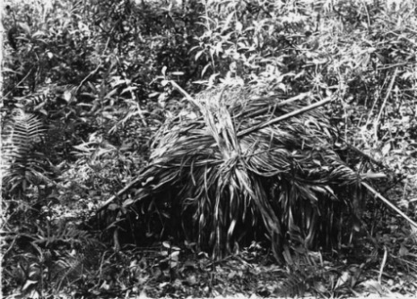 Florida Keys Indian Burial Mound or Cache