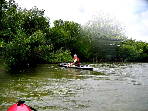 Kayaking the Channels at John Pennekamp