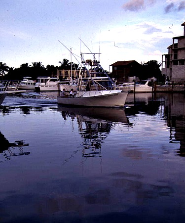 Fishing key largo with these fishing guides gets top results for Key largo fishing