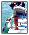 Miss Inclined Flats Fishing Top Key West Fishing Guides
