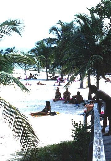 People Tanning on John Pennekamp Beach