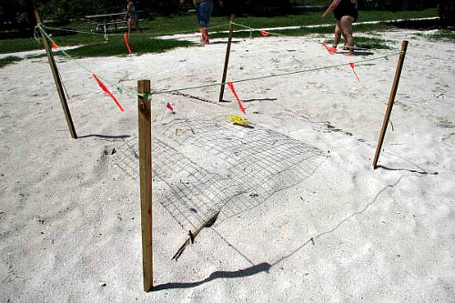 Marked Sea Turtle Nests