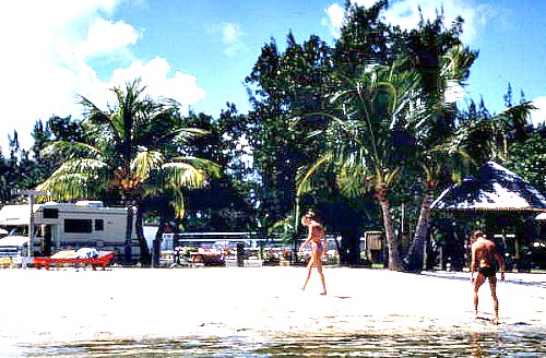 Florida keys rv parks campgrounds on big pine key for Big pine key fishing lodge big pine key fl