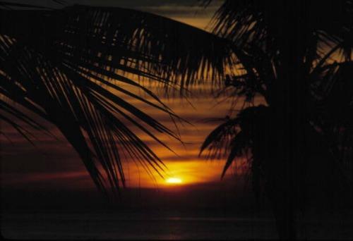 Sun Rising Over Islamorada