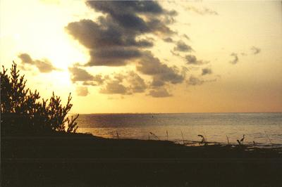 Another Beautiful  Bahia Honda Sky