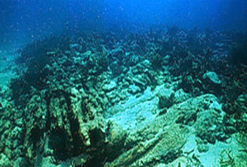 Remains of the Ivory Wreck