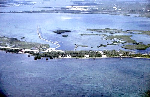 Water Around Big Pine Key Attracts Eco Adventure Tours