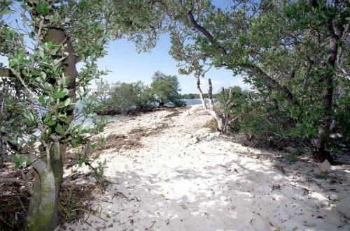 Coco Plum Beach Marathon Florida