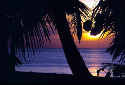 Coconut Palms, Spectacular Sunsets and Beautiful Florida Keys Beaches