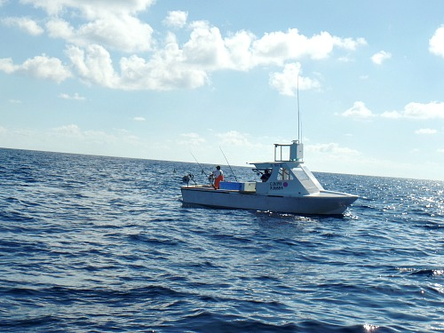 Commercial Fishermen Fishing the Marathon Hump For Amberjack