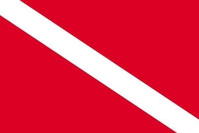 US Diver Down Flag