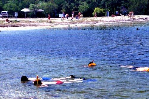 Snorkeling in Key Largo at John Pennekamp Coral Reef State Park