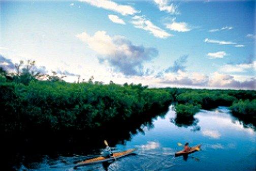 Kayak Fishing the Florida Keys Backcountry