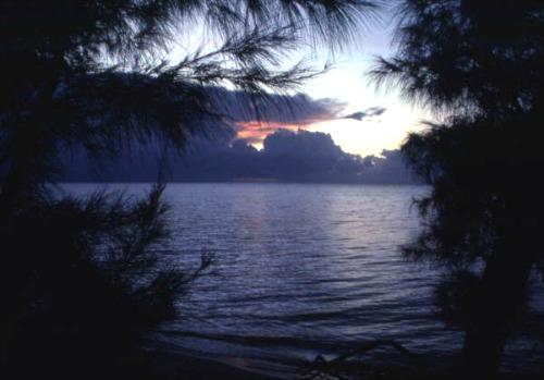 Long Key State Park south of Islamorada