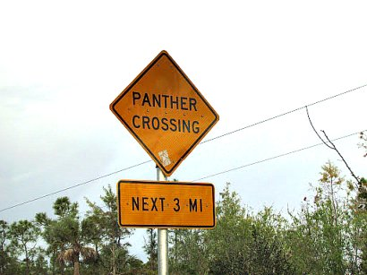 Panther Crossing Signs