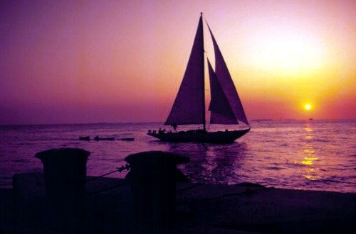 Sailing at Sunset Near Key West Bight Marina