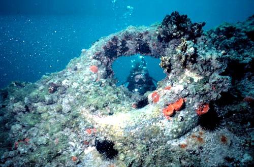 Alexanders Wreck