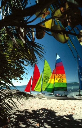 Sea grapes frame a colorful shot of hobie cats on Smathers Beach Key West