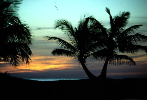 Florida Keys are a Tropical Paradise
