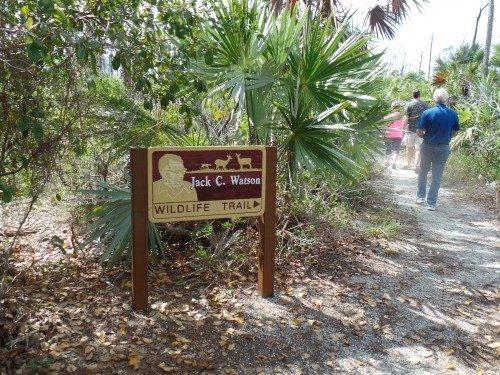 Beginning Of the Jack Watson Trail