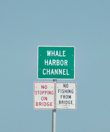 Whale Harbor Channel